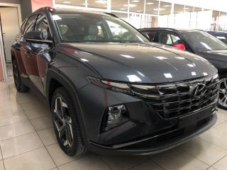 HYUNDAI Tucson 1.6 T-GDI 48V DCT 4WD my21 Excellence