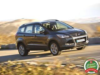 FORD Kuga 2.0 TDCI 150 CV S&S 4WD Powershift Business